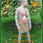 What she wore – Next rabbit jumper dress