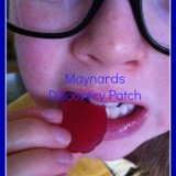 Review: Maynards Discovery Patch