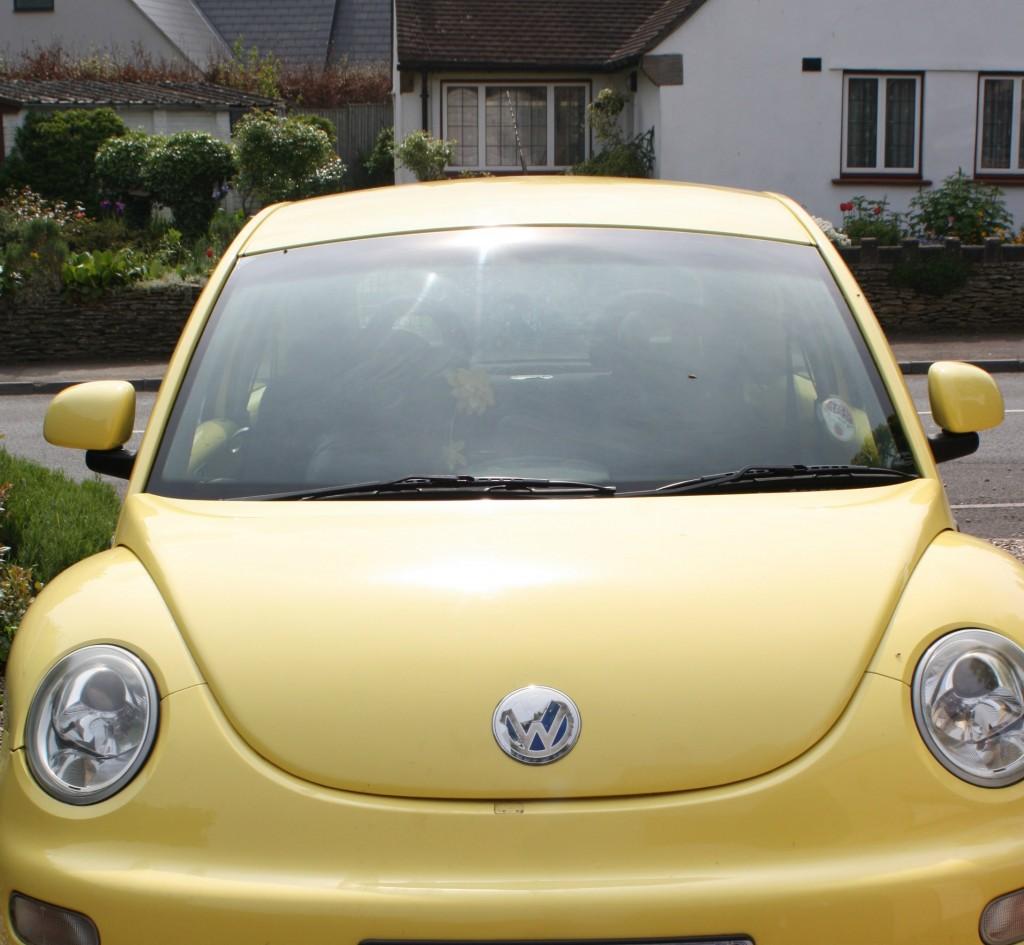 Car, beetle, 365