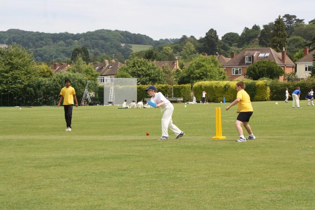 Cricket, son, school, 365