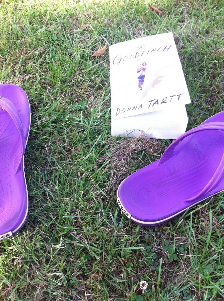 Book, flip-flops, summer, 365