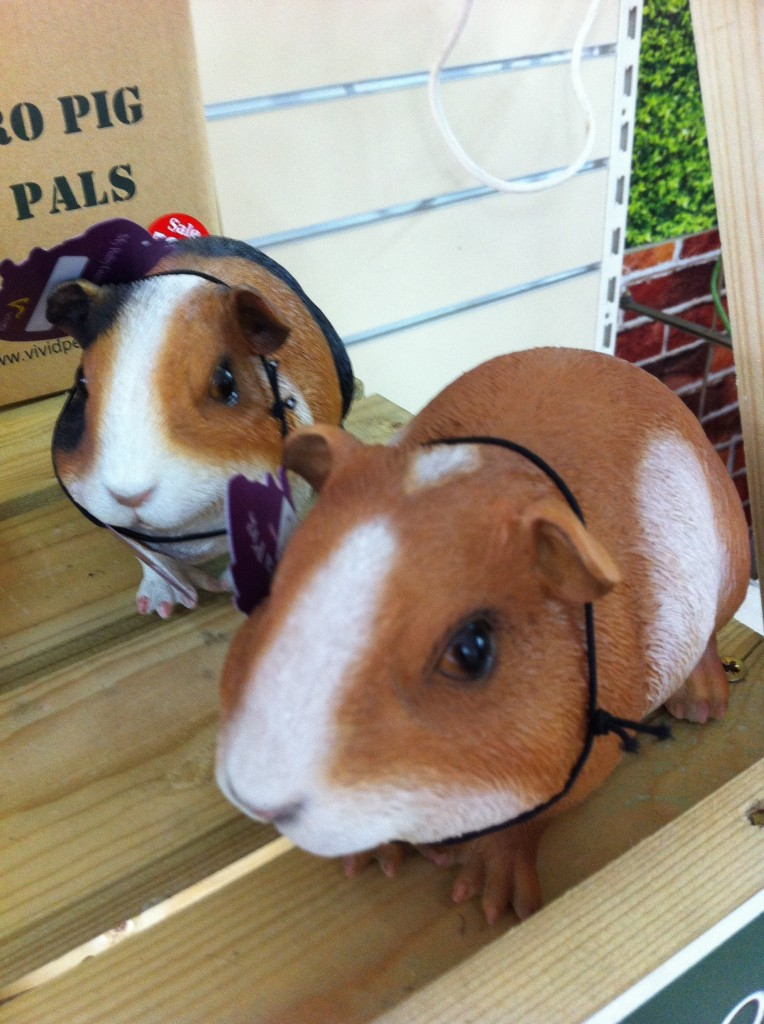 The Gallery, pets, guinea pig ornaments