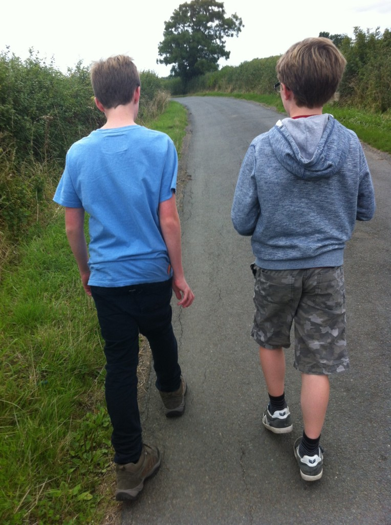 Boys, Sons, Walking, 365