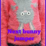 What she wore: Next pink bunny jumper