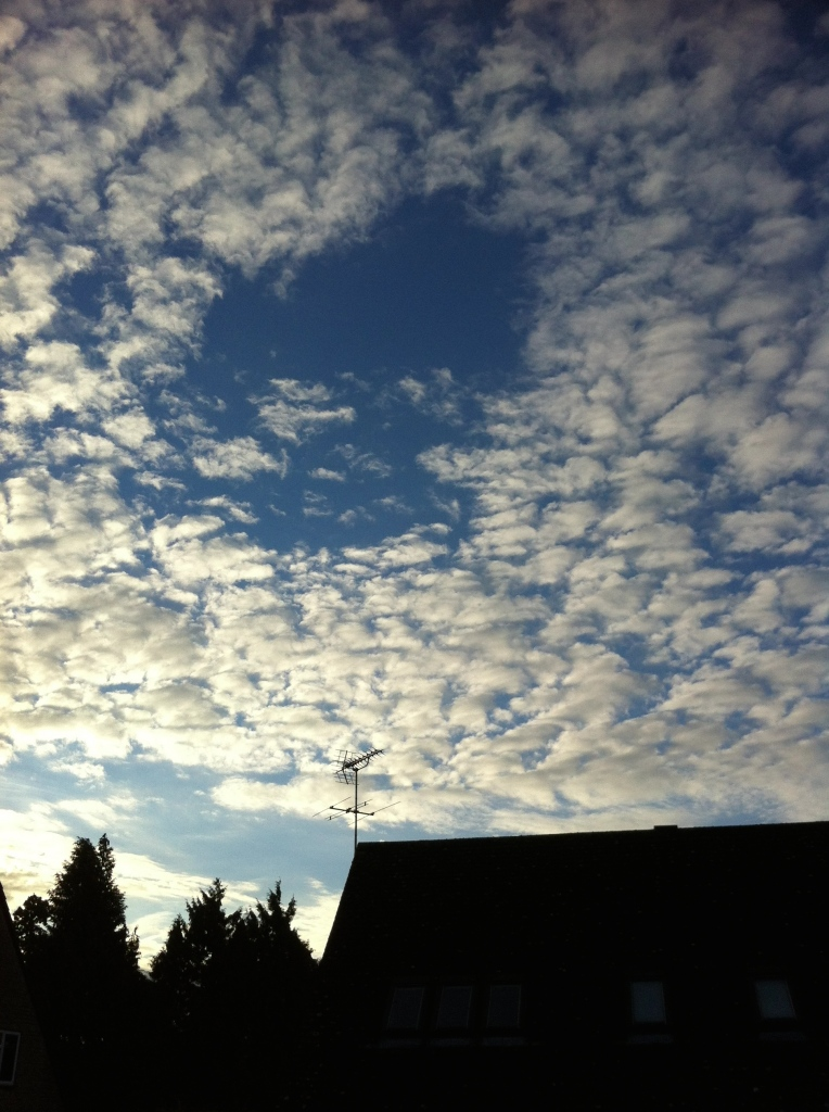 Autumn, sky, sunrise, silhouette, 365
