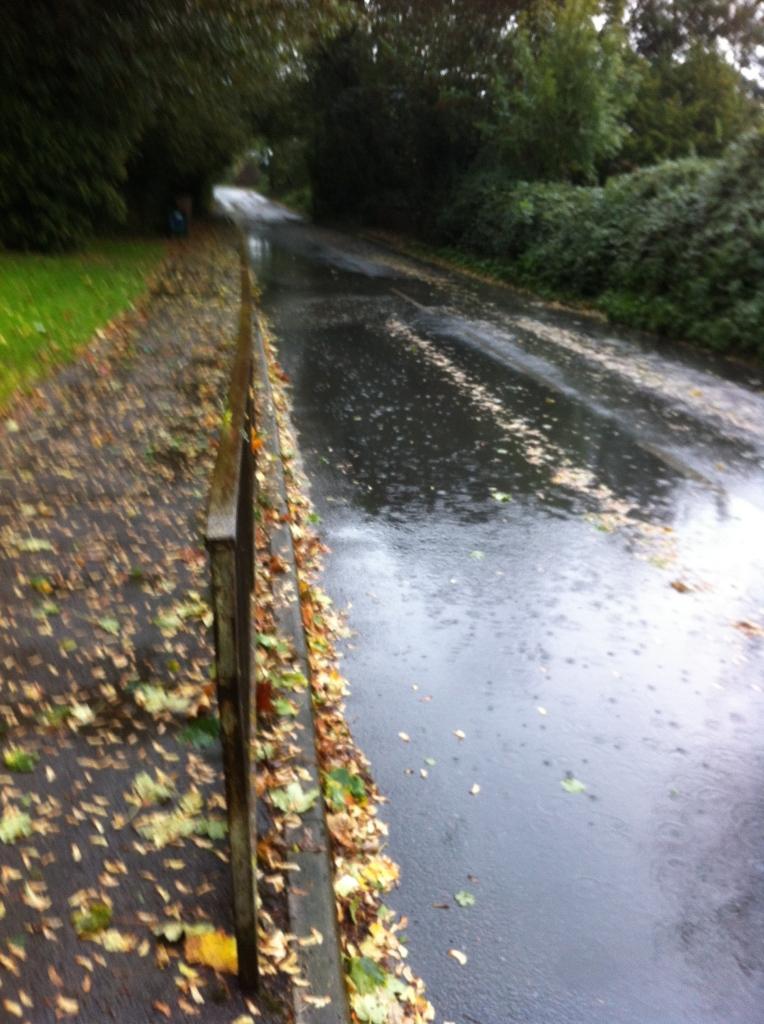 Rain, weather, autumn, 365