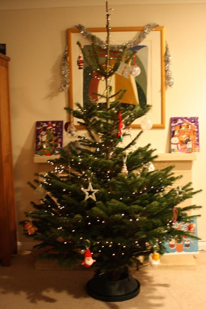 Christmas tree, Christmas, Christmas traditions