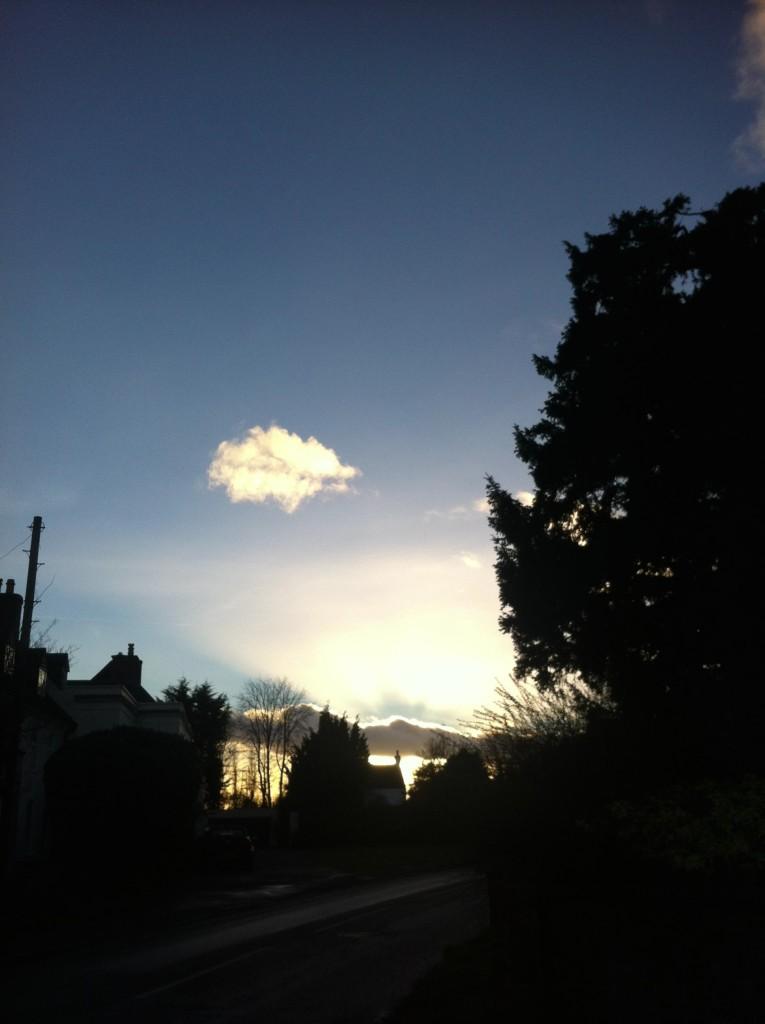 Silent Sunday, My Sunday Photo