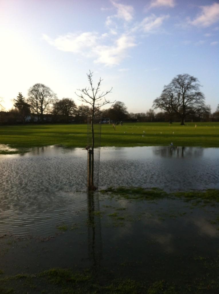 Flood, Rain, Winter, weather, 365