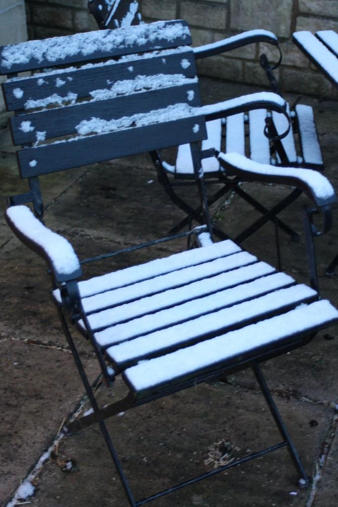 Snow, Garden, 365