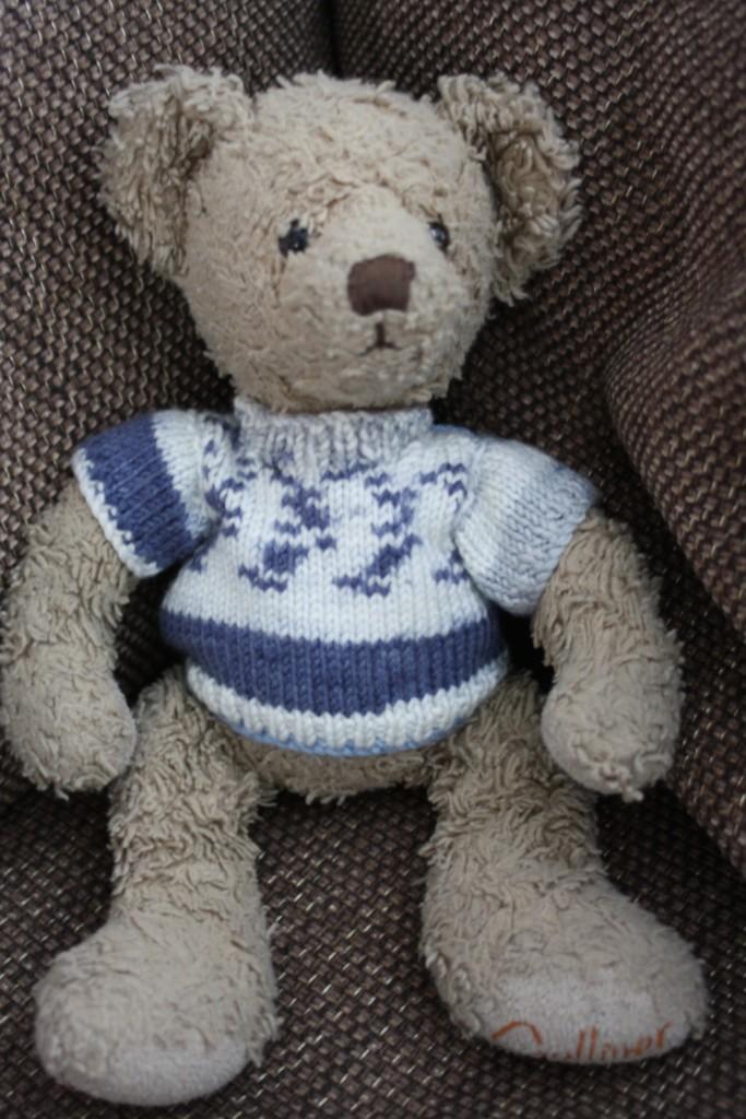 Teddy, Daughter, Jumper, 365