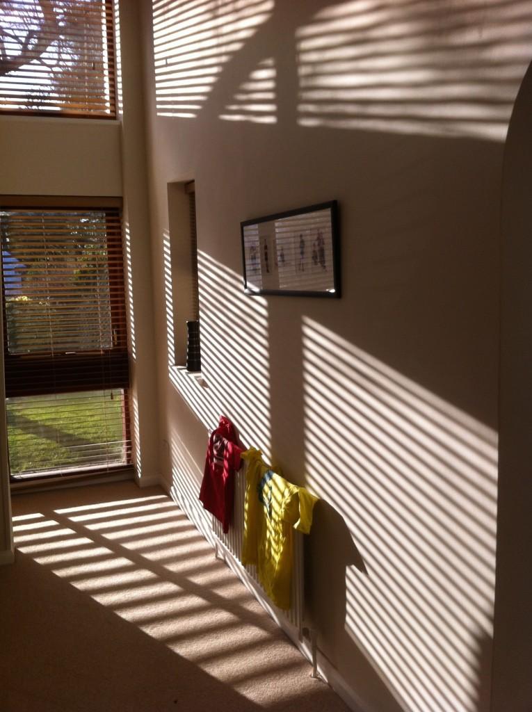 Sunlight, Window, Spring, 365