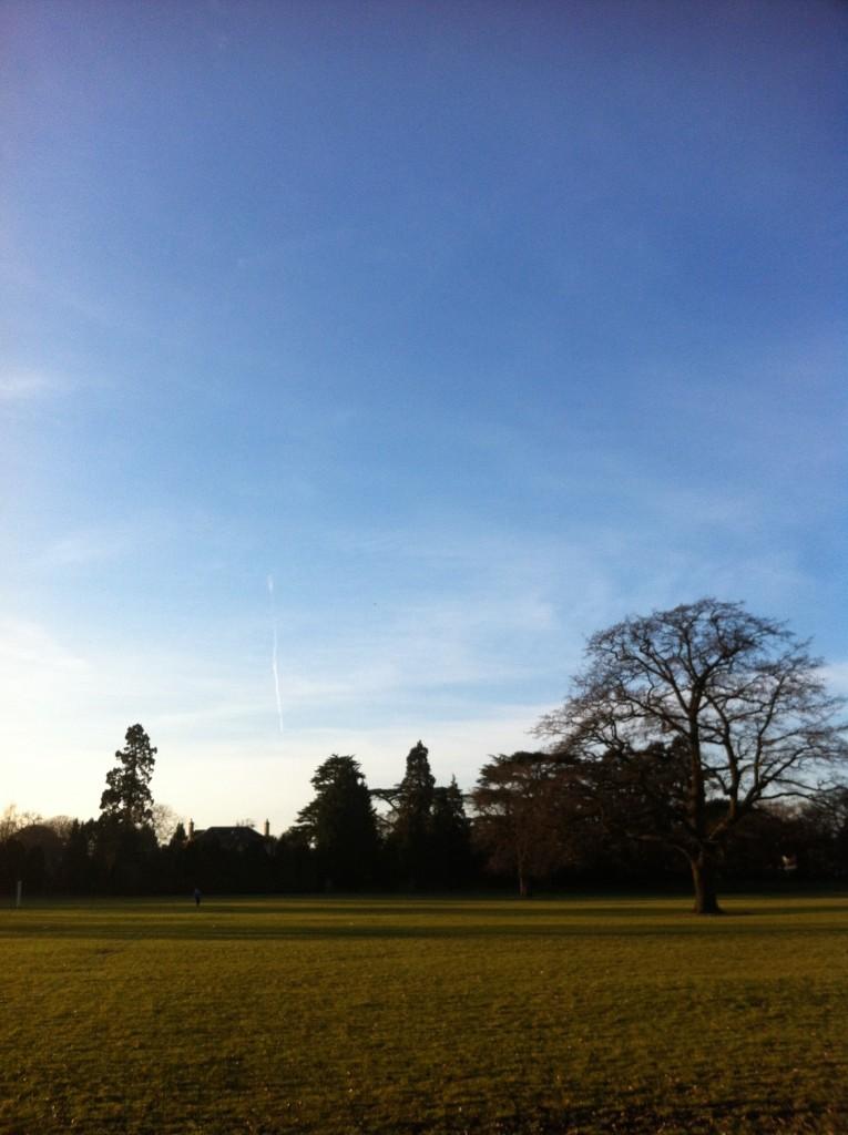 Blue sky, Winter, Spring, 365