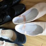 The ballet show 2015