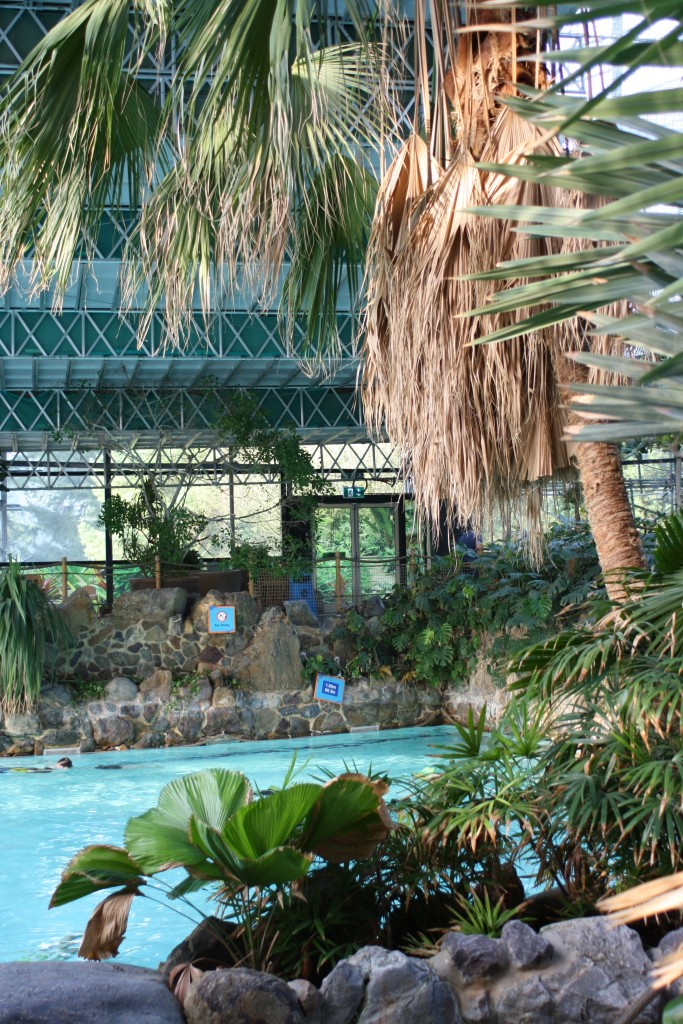 Subtropical Swimming Paradise, Swimming, Center Parcs, Center Parcs activities, Holiday