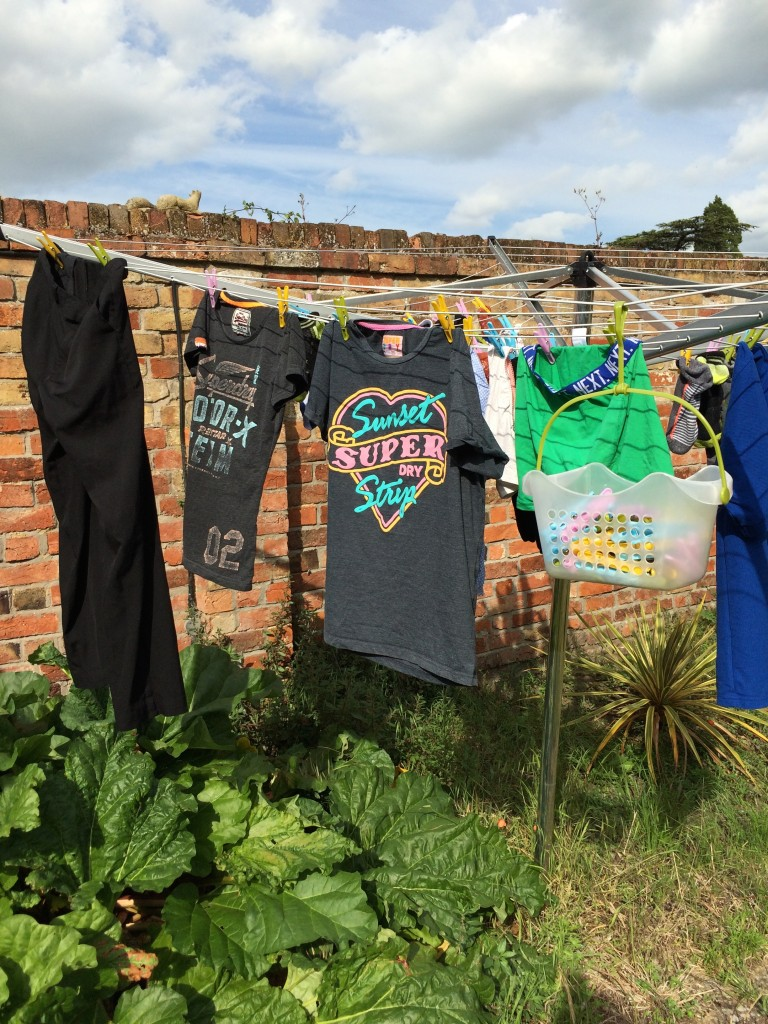 Washing, Garden, Housework, Britmums Live