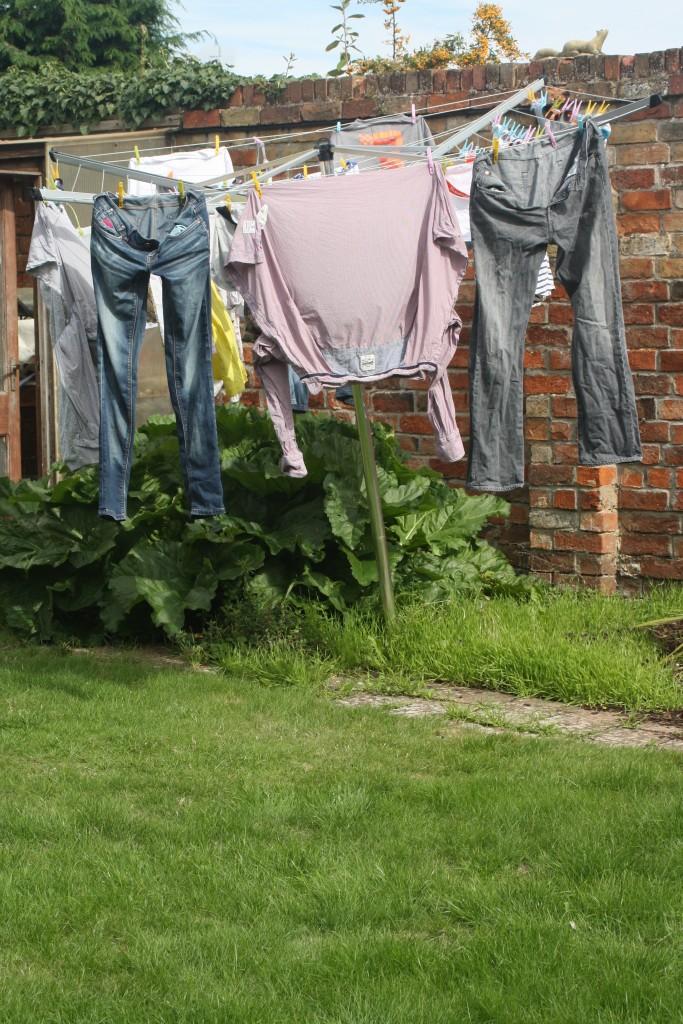 Washing, Holiday, 365
