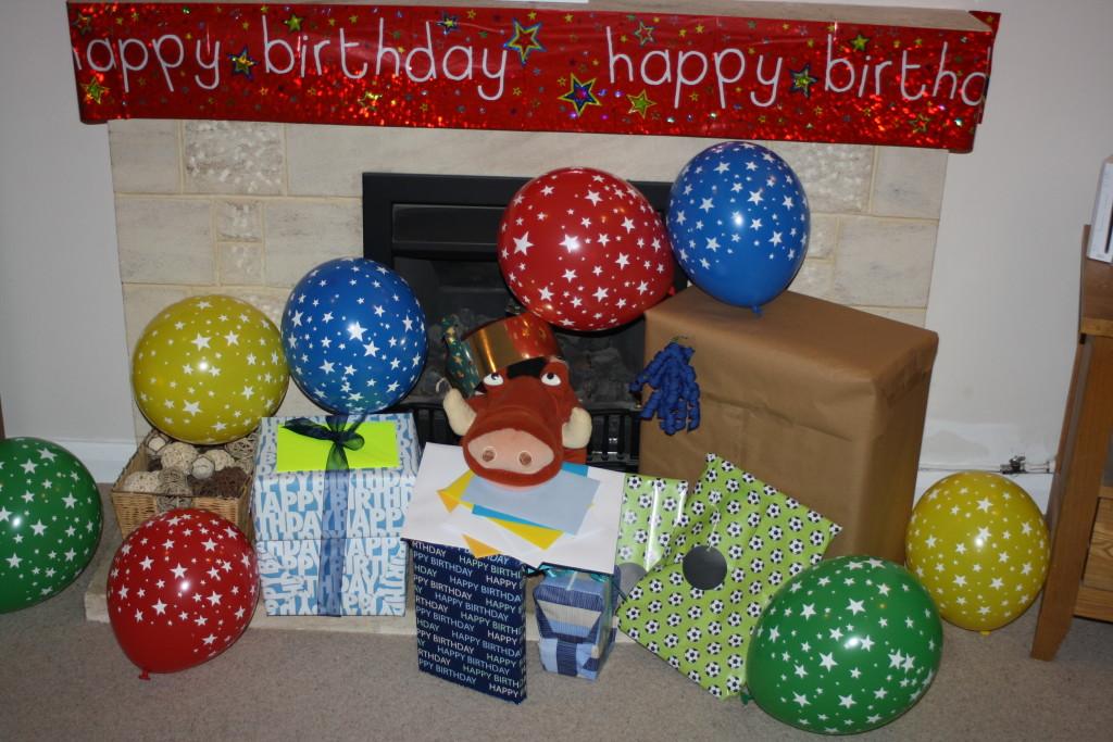 Birthday, Son, 12th birthday, Pumba, 365