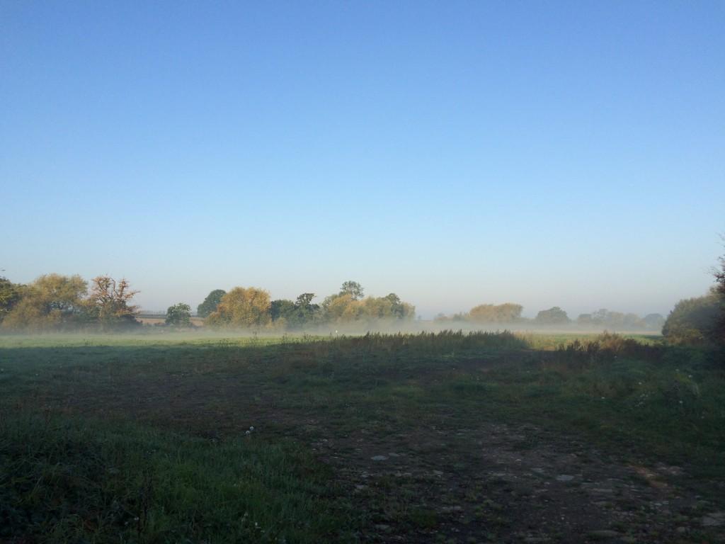 Morning, Mist, School run, Autumn, 365