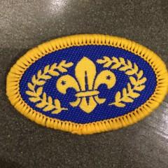 The Scout badges: Loud 'n' Proud