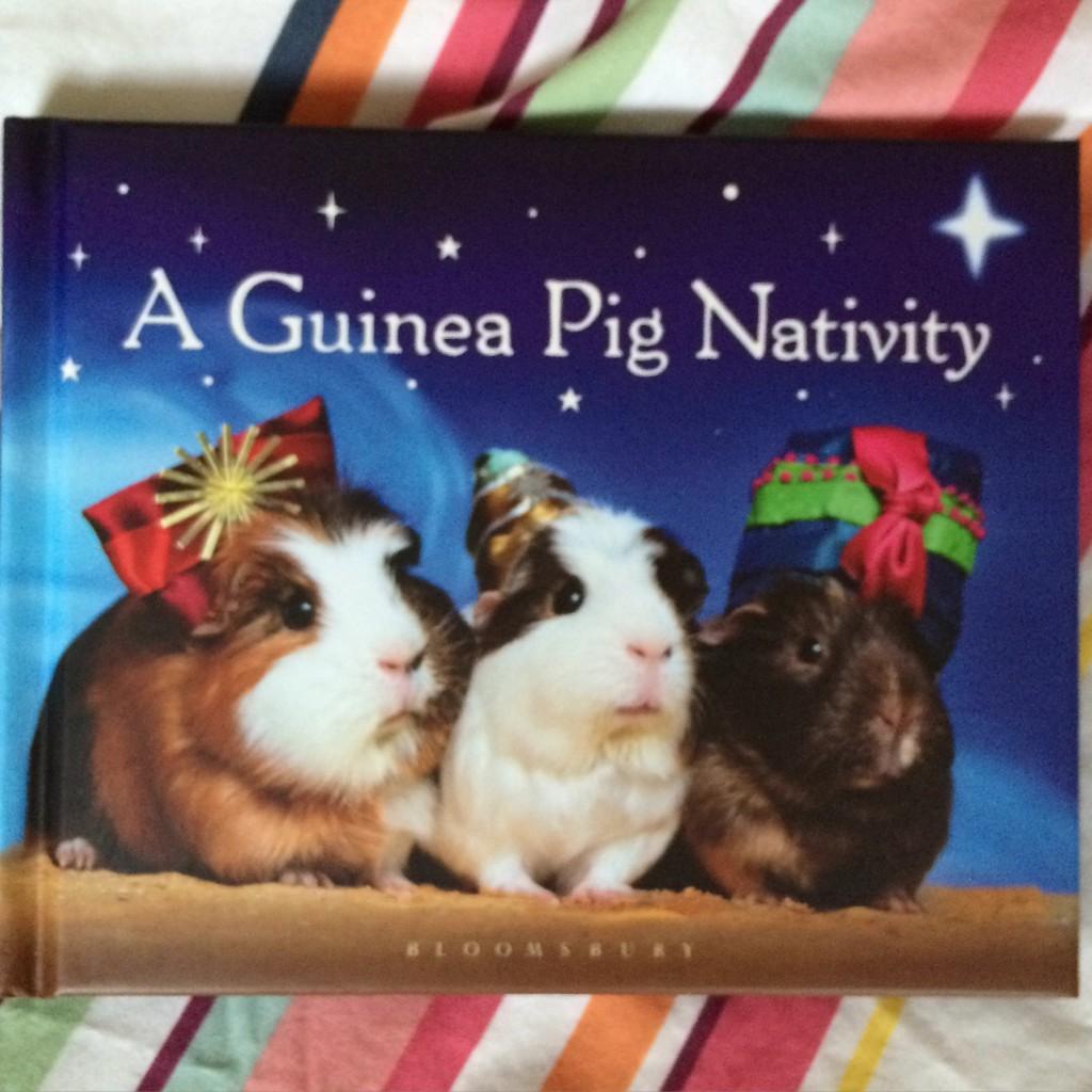 Guinea pigs, Book, 365, Christmas