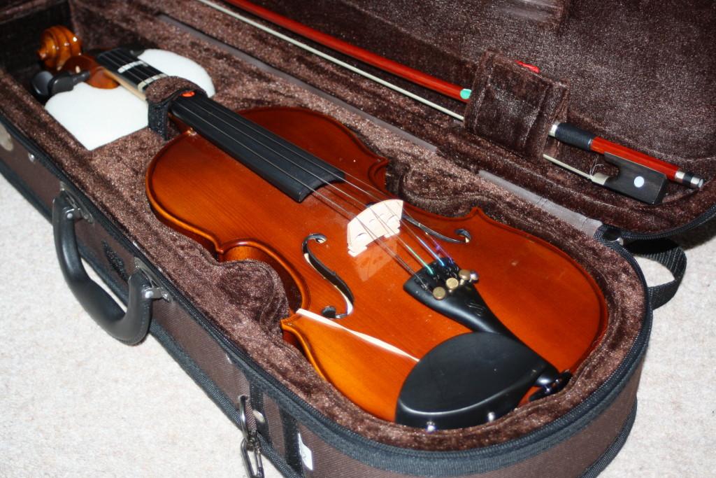 Violin, Violinist, Son, School concert