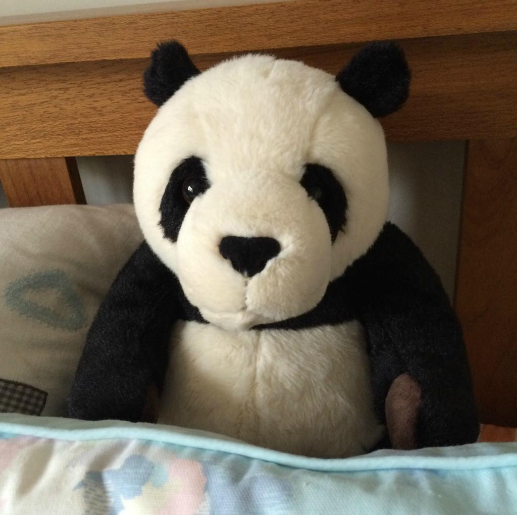 Panda, 366, 365
