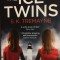 The Ice Twins by S K Tremayne