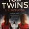 The Ice Twins by S K Tremayne