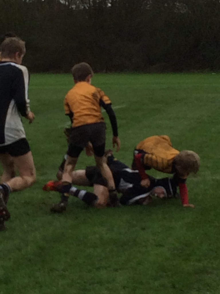 Rugby, Son, School, 365, 366