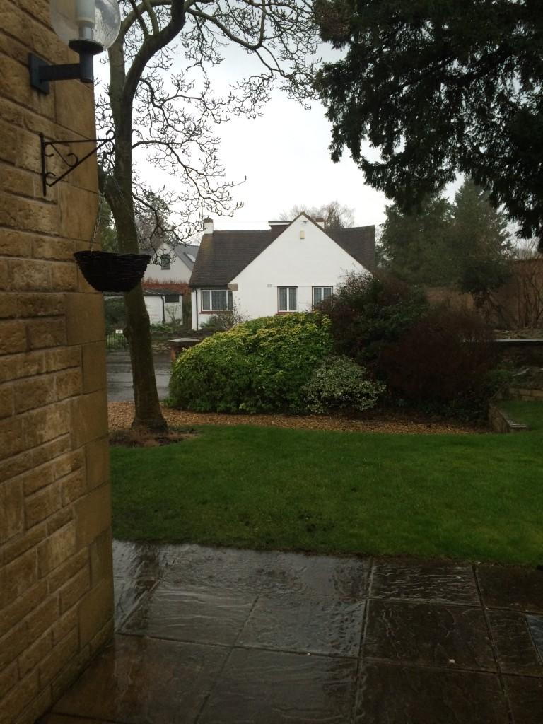 Rain, 365, 366