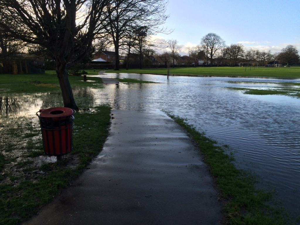 Flooding, Park, Rain