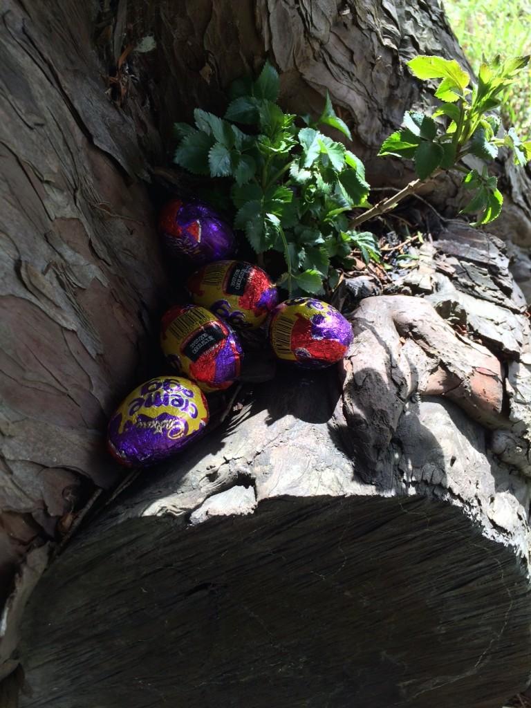 Easter, Easter egg hunt, 365, 366