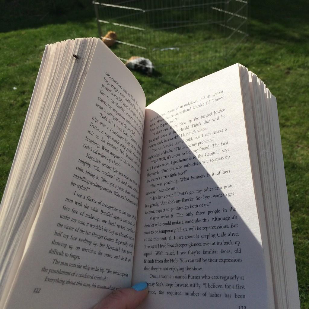 Garden, Book, 365, 366