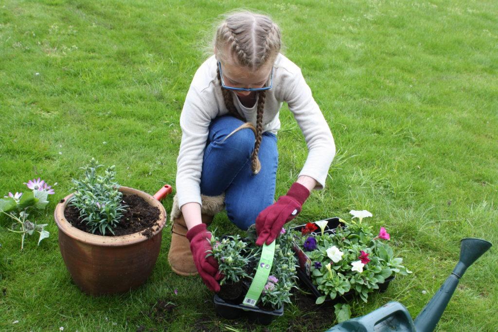 Daughter, Gardening, Garden, 365, 366
