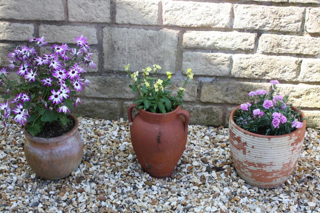 Flowerpots, Flowers, Garden