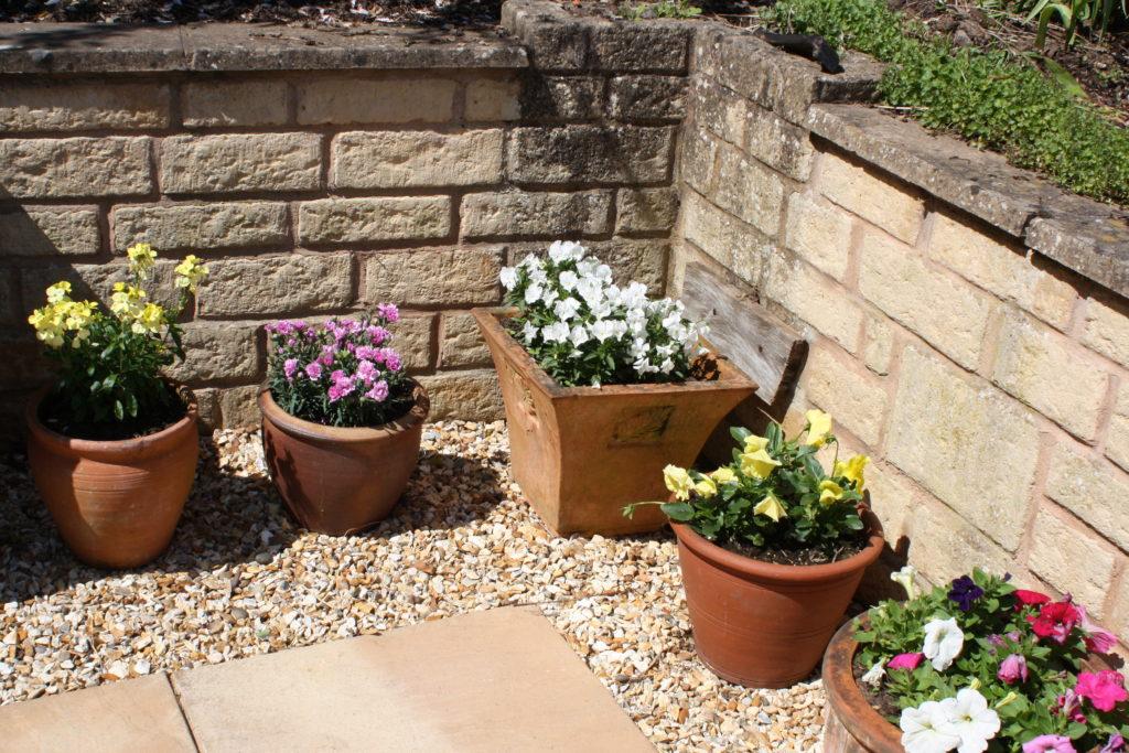 Flowerpots, Flowers, Plants, Garden