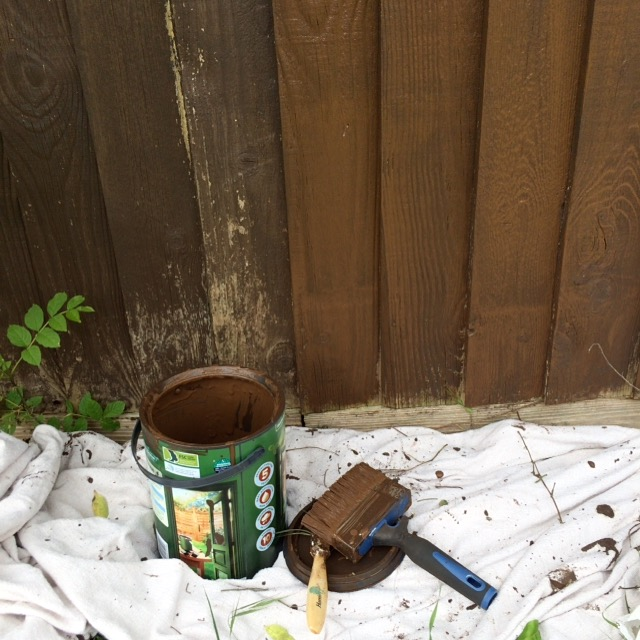Fence, Painting, Garden, 365, 366