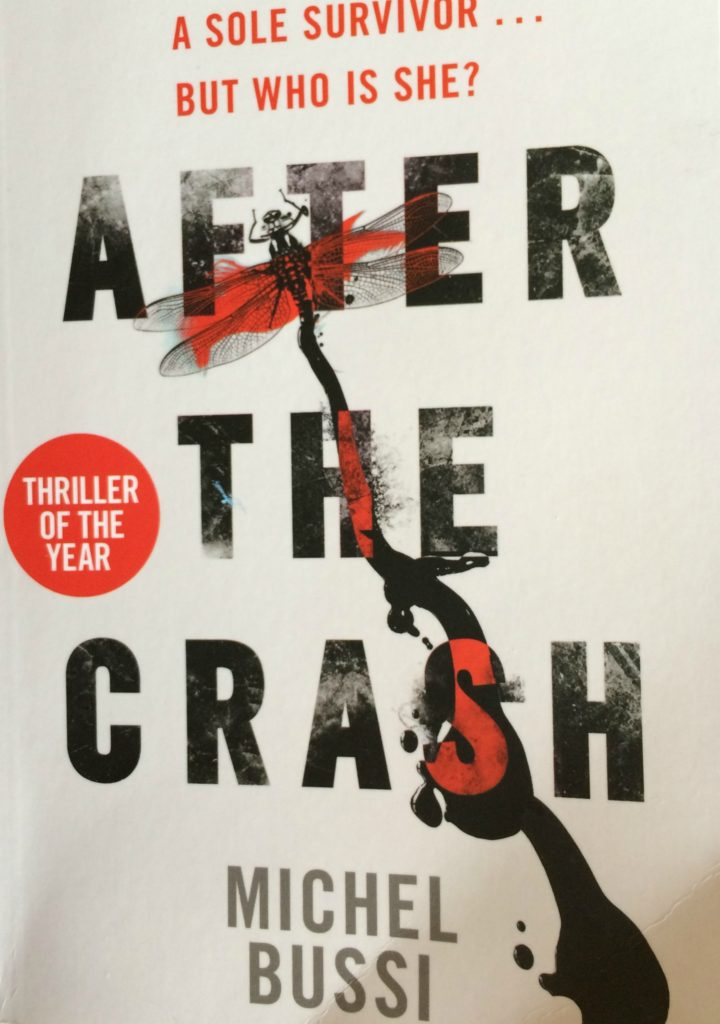 After the Crash, Michel Bussi, Book review