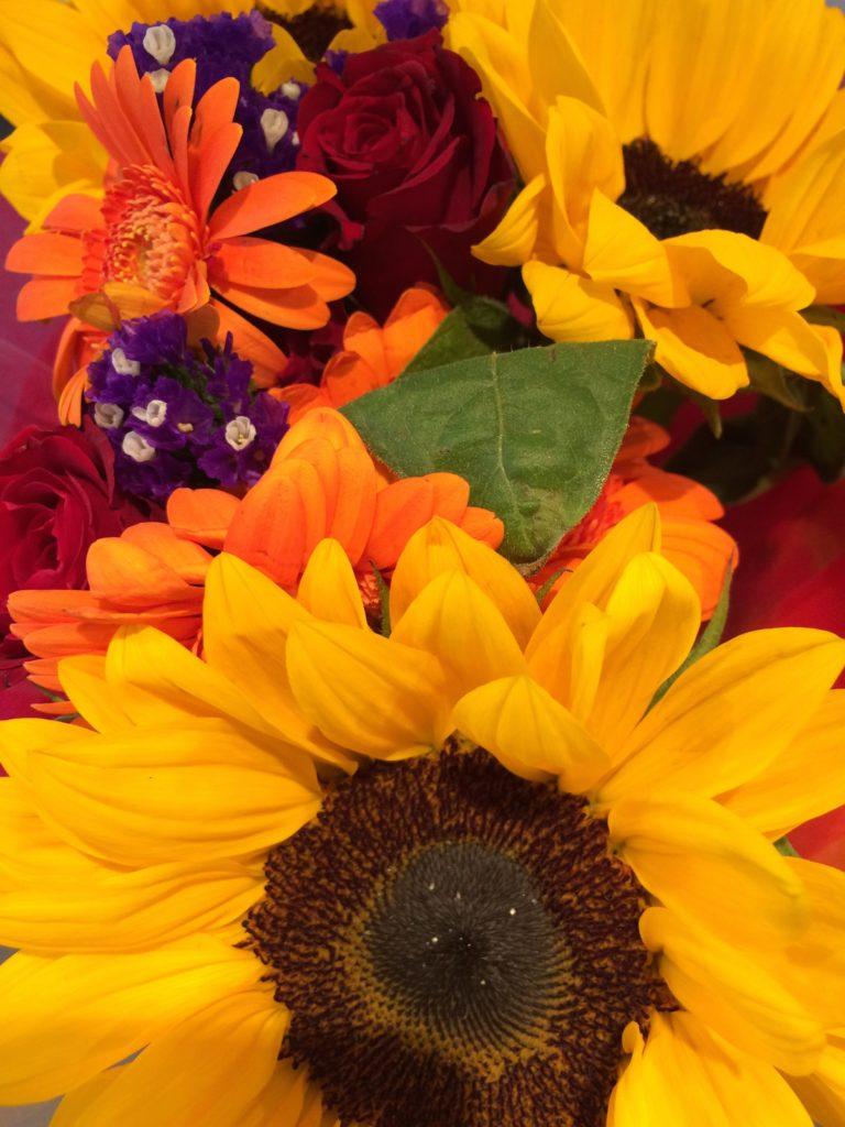 Flowers, Work, Gift, 365, 366