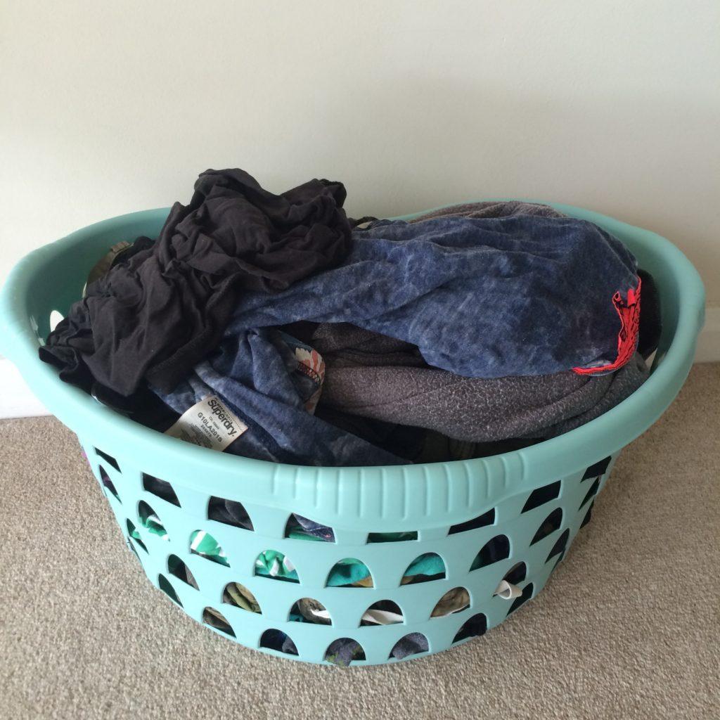 Washing, 365, 366, Holiday