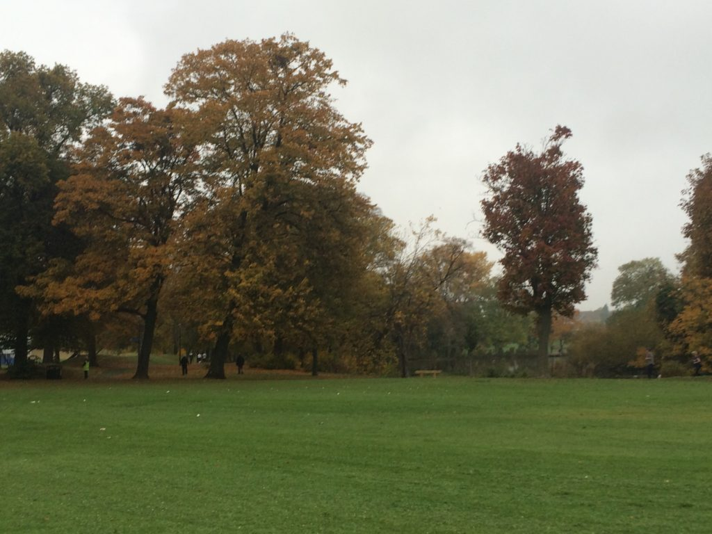 Parkrun, Autumn, 365, 366
