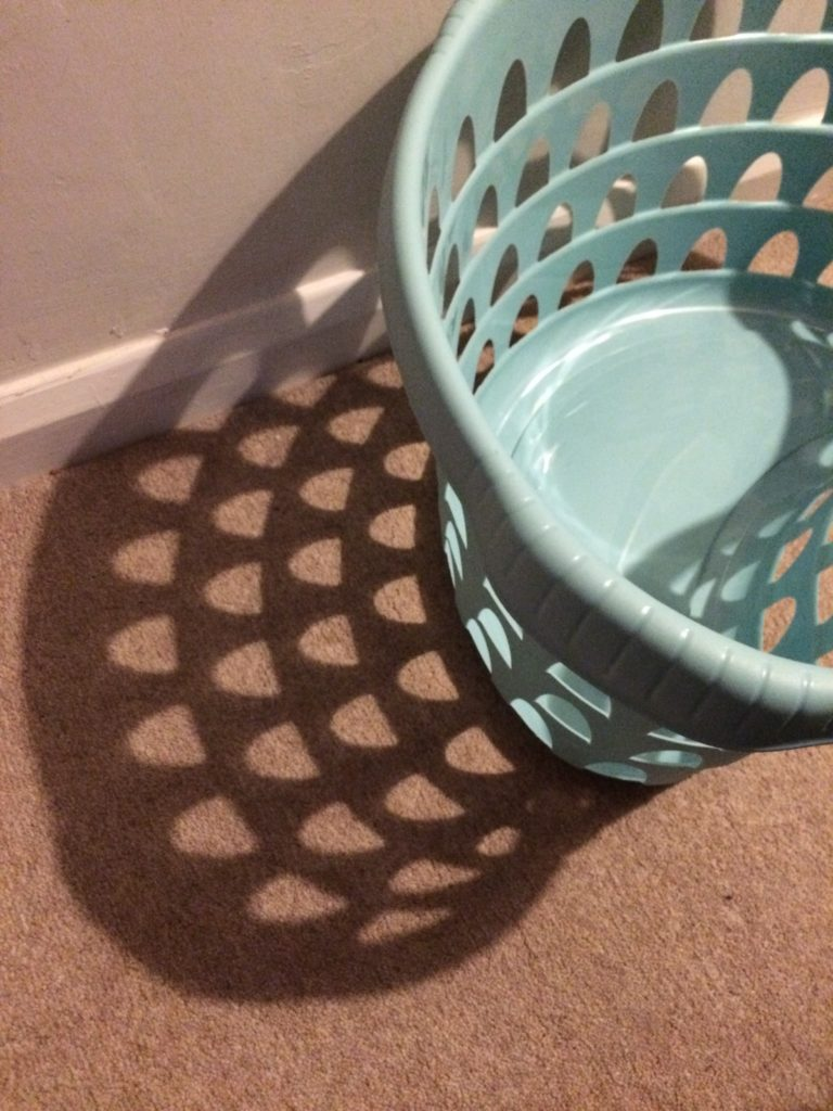 Washing basket, Colosseum, Rome, 365, 366