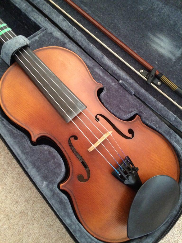Violin, Son, Teenager