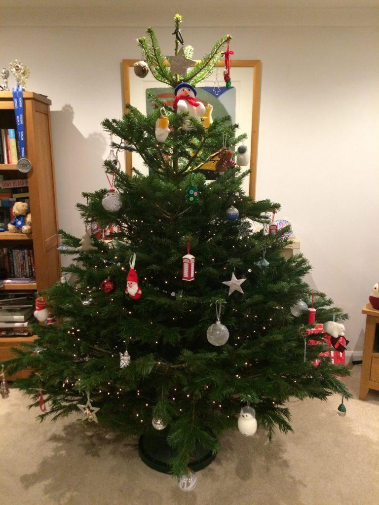 Christmas tree, Christmas, 365, 366