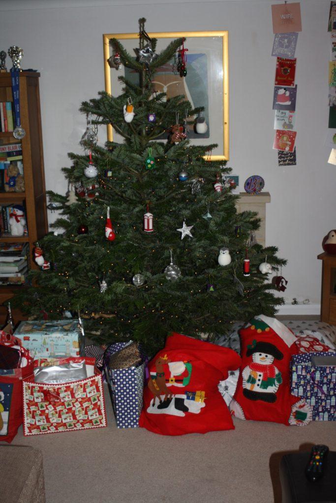Christmas Day, Christmas tree, Presents, 365, 366