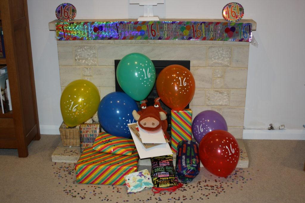 365, Birthday, Son, 16th birthday, Pumba