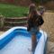 The paddling pool