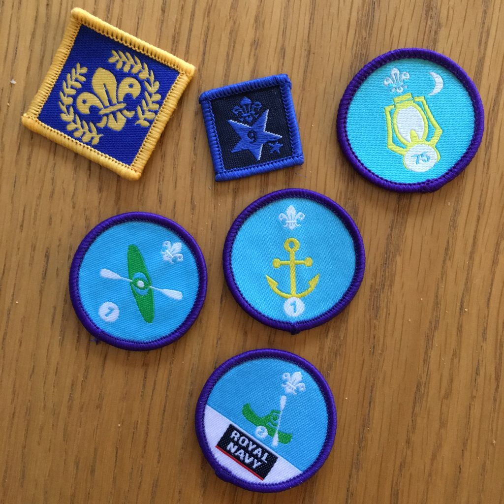 Scout badges, Explorer badges, Chief Scout's Platinum Award, Son, 365