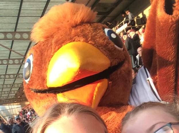 Cheltenham Town, Football, Mascot, Whaddney Robin, 365